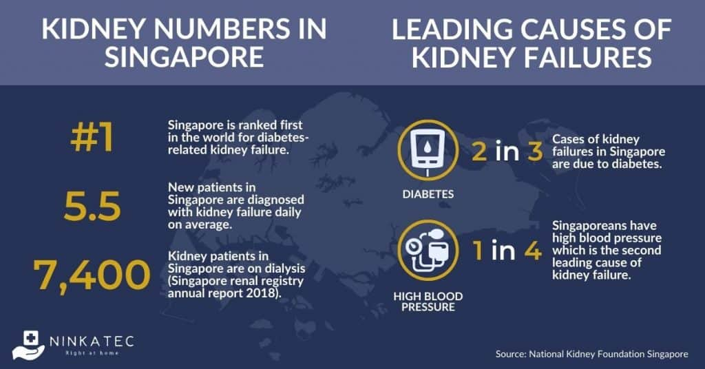 Kidney Facts in Singapore - Leading Causes of Kidney Failure